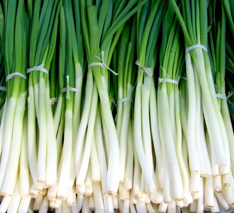 Зелен лук на връзка 1