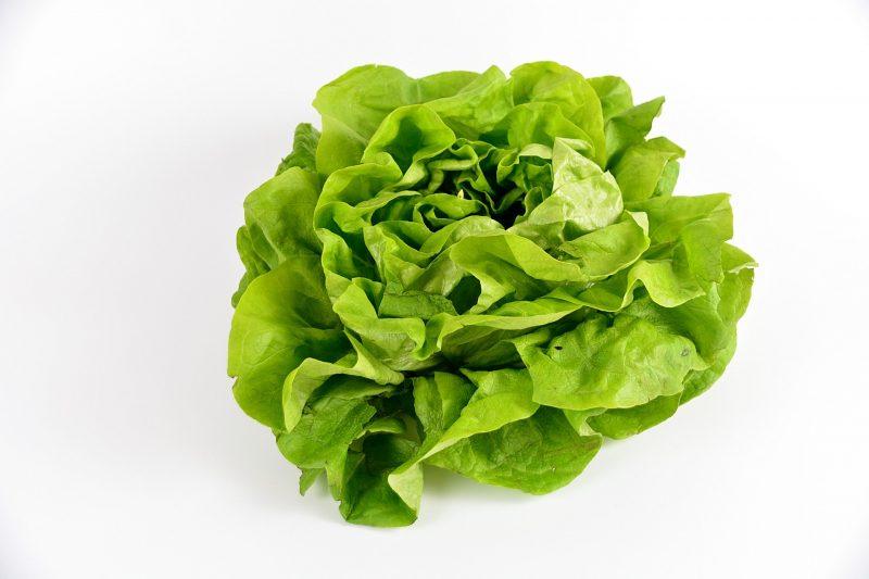 Зелена салатка 1 бр. 1